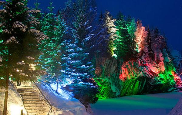 Новогодние и регулярные туры в Карелию